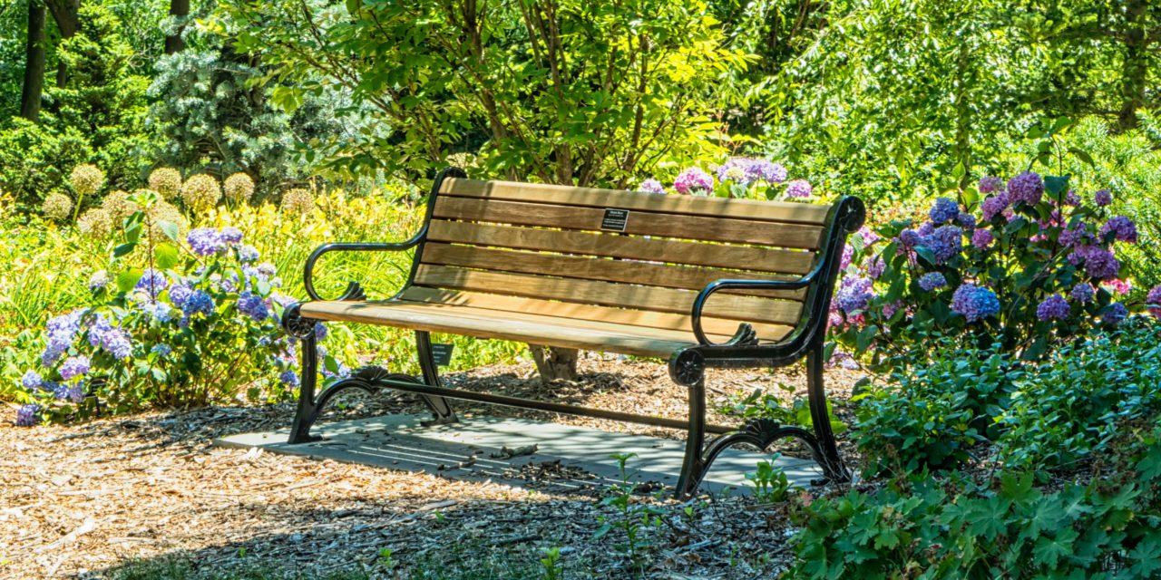 Gartenmöbel reinigen – 9 Tipps zur Pflege von Alu, Holz und Edelstahl