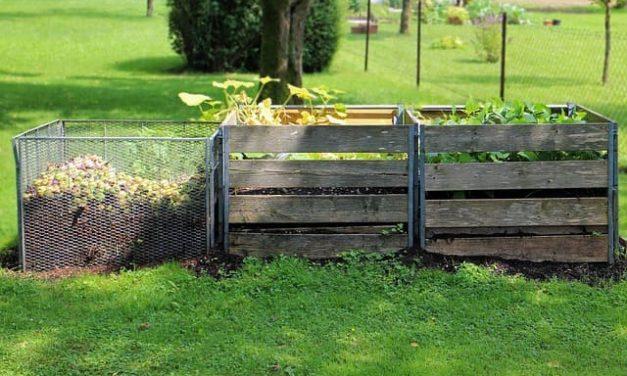 Kompost – Ideale Nahrung für den Boden