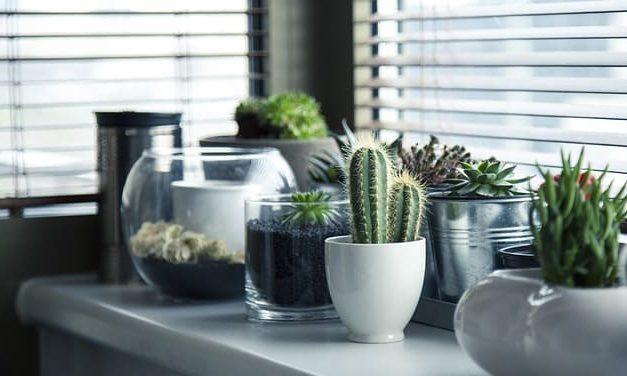 Inspiration für deine Fensterdeko