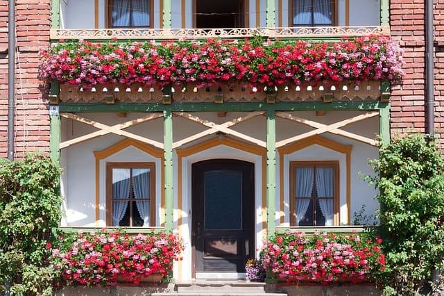 Tipps und Inspirationen für Balkonblumen » Einfach, schnell, praktisch